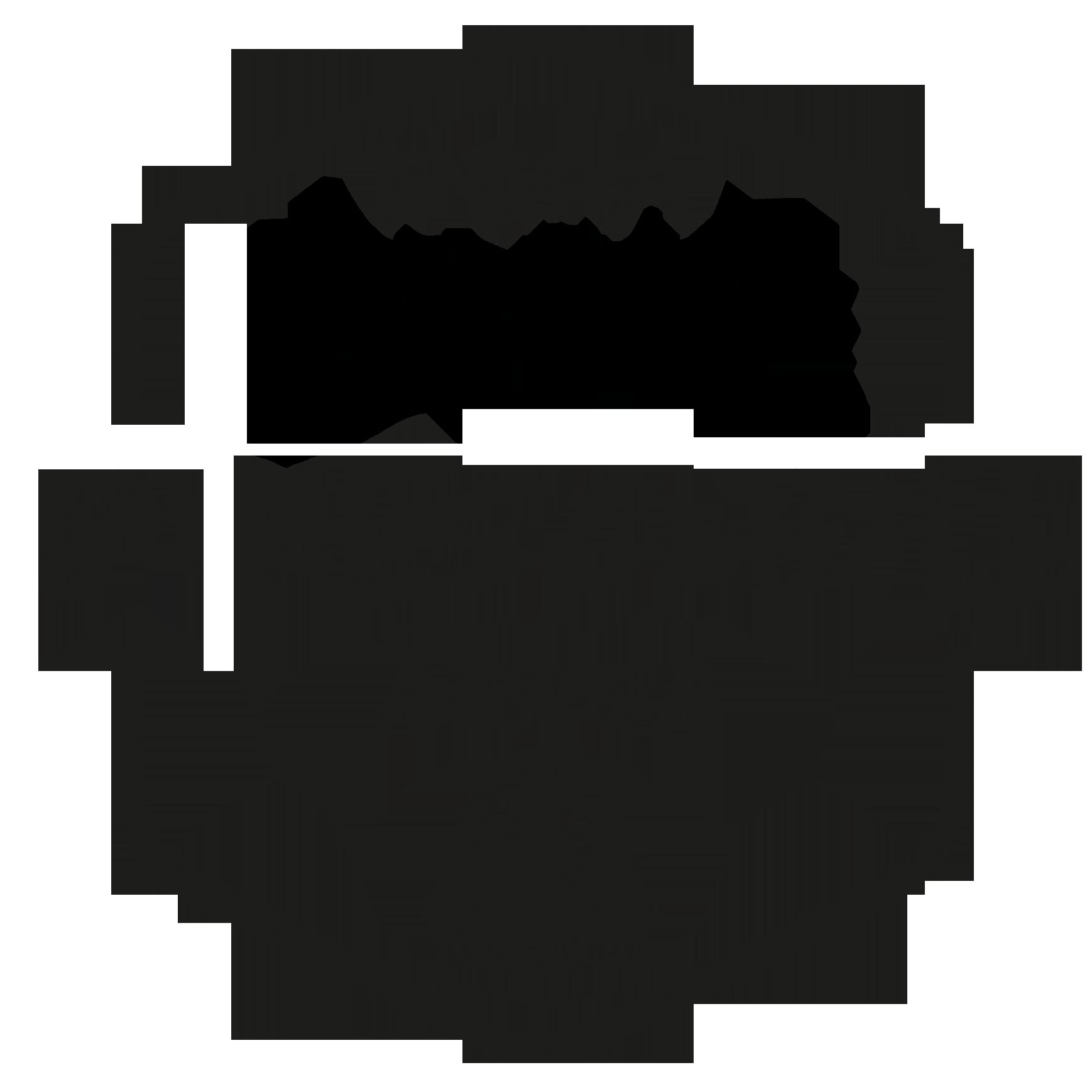 rema bikeschule arosa